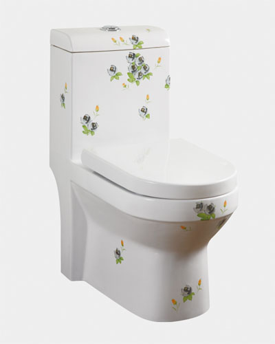 Siphonic one-piece toilet 9131 C05 black rose